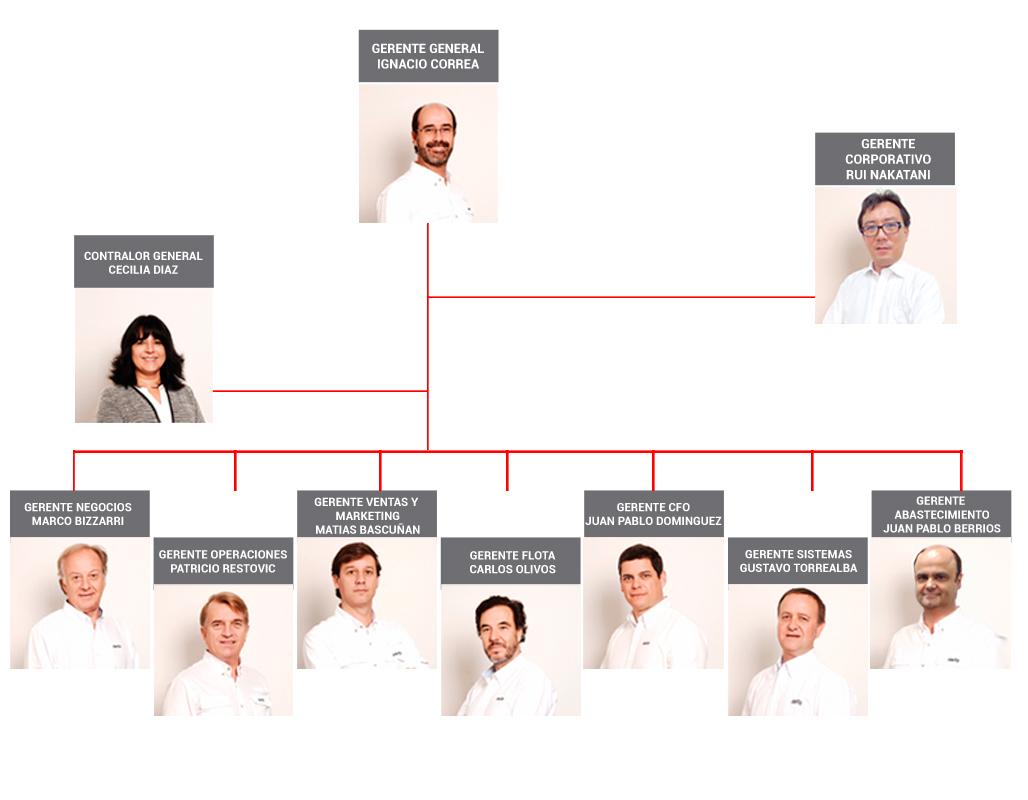 organigrama-mitta-2019